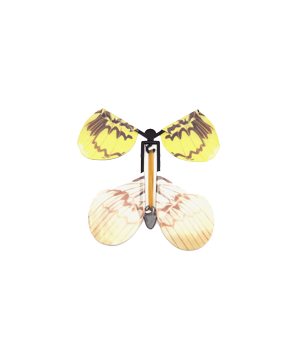 magic_butterfly_1