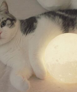 Moon Nightlight Lamp, Moon Nightlight Lamp