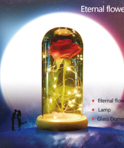 Beauty-and-the-Beast-Red-Rose-in-a-Glass-Dome-on-a-Wooden-Base-for-Valentine-6.jpg