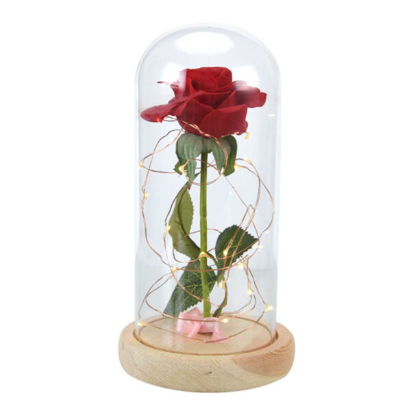 Beauty-and-the-Beast-Red-Rose-in-a-Glass-Dome-on-a-Wooden-Base-for-Valentine-7