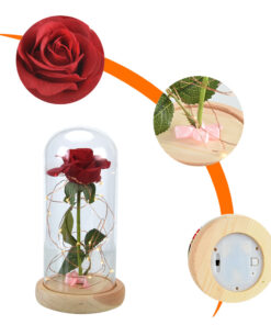Người đẹp và quái vật-Red-Rose-in-a-Glass-Dome-on-a-Wood-Base-for-Valentine-8.jpg