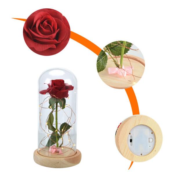 خوبصورتی اور جانور-سرخ گلاب-میں-شیشے کے گنبد-پر-لکڑی-بیس-برائے ویلنٹائن -8 جے پی جی