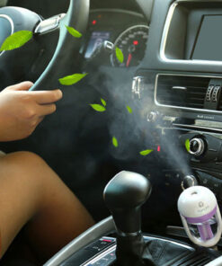 Car-Aroma-Diffuser-12V-Steam-Air-luftfuktare-Mini-Air-reningsverk-Aromaterapi-Essential-Oil-Diffuser-Portable-Mist.jpg
