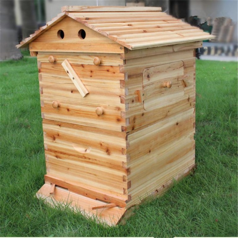 Automatic-langstroth-honey-flow-bee-hive-beehive-with-7-pcs-flow-frames-1.jpg