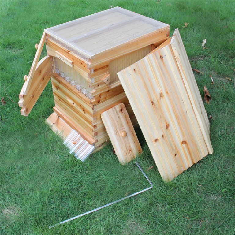 Automatic-langstroth-honey-flow-bee-hive-beehive-with-7-pcs-flow-frames-3.jpg
