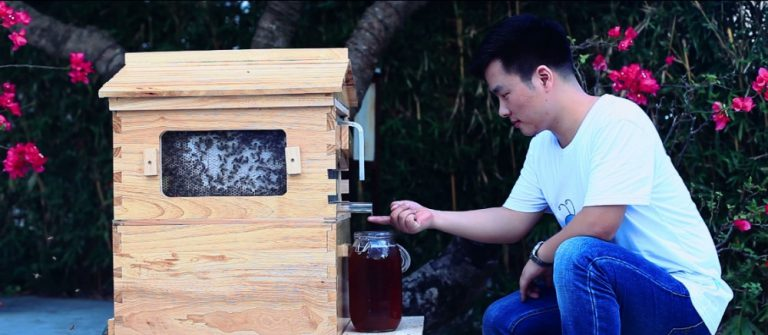 Automatic-langstroth-honey-flow-bee-hive-beehive-with-7-pcs-flow-frames-5.jpg