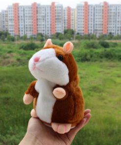 talking hamster, Cute Talking Hamster