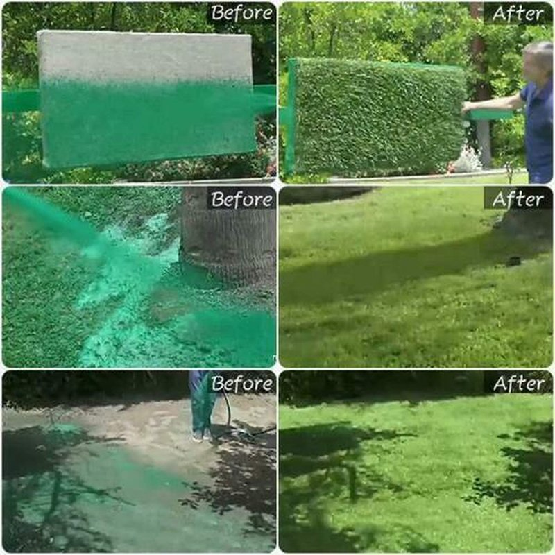 Best Liquid Lawn System Grass Seed Sprayer Buy Now