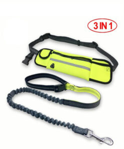 hands free dog leash, Handsfree Bungee Dog Leash