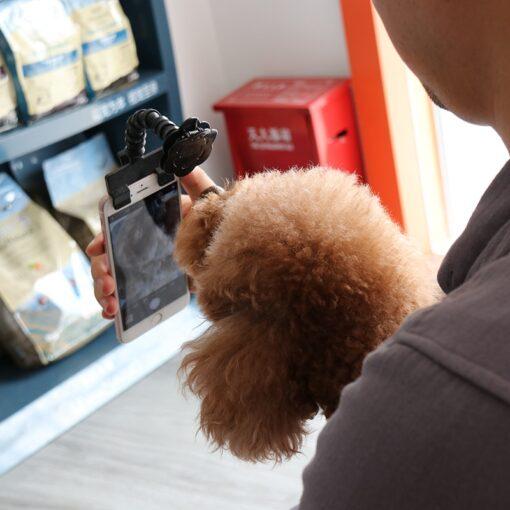 Pet Selfie Stick, Pet Selfie Stick