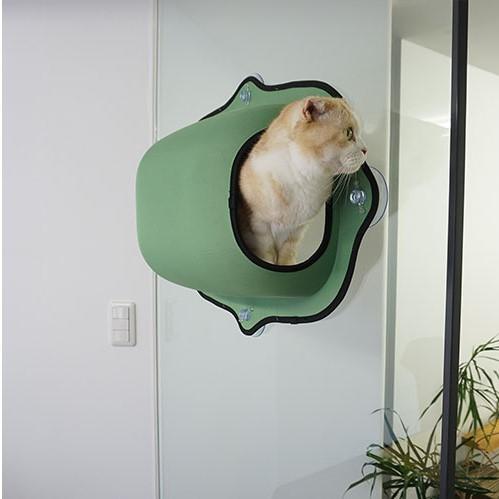Coolest Cat Bed, Coolest Cat Bed