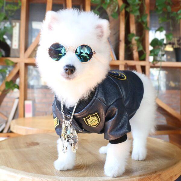 Pet Sunglasses Dog Eye wear Cat Glasses Little Dog Glasses Photos Props Dog Cat Accessories Pet 1