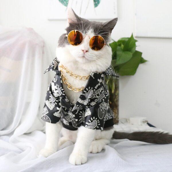 Pet Sunglasses Dog Eye wear Cat Glasses Little Dog Glasses Photos Props Dog Cat Accessories Pet 11.jpg 640x640 11