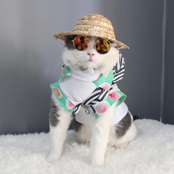 Pet Sunglasses Dog Eye wear Cat Glasses Little Dog Glasses Photos Props Dog Cat Accessories Pet 2