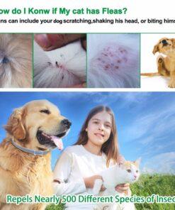 Tick Dog Collar, Anti Flea & Tick Dog Collar