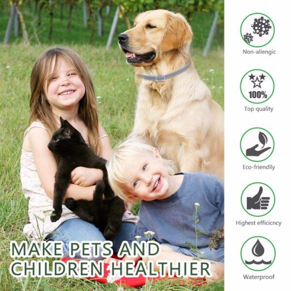 Dewel Dog Collar Anti Flea Mosquitoes Ticks Insect Waterproof Herbal Pet Collar 8 Months Protection Dog 2