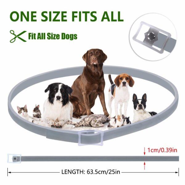 Dewel Dog Collar Anti Flea Mosquitoes Ticks Insect Waterproof Herbal Pet Collar 8 Months Protection Dog 3