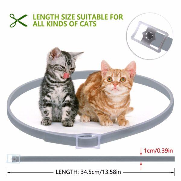 Dewel Summer Anti insect Cat Dog Collar Anti Flea Mosquitoes Ticks Waterproof Cat Flea Collar for 4