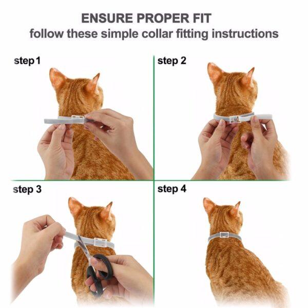 Dewel Summer Anti insect Cat Dog Collar Anti Flea Mosquitoes Ticks Waterproof Cat Flea Collar for 5