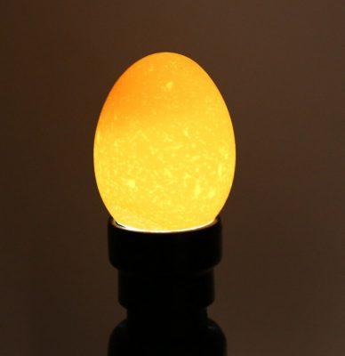 Egg Tester Light, Egg Tester Light