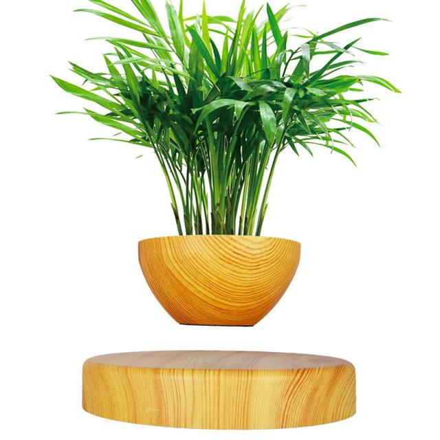 Magnetic Levitation Air Floating Bonsai Plant Pot Home Decor Buy Online