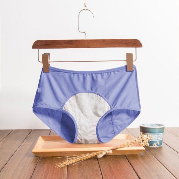Physiological Pants Leak Proof Menstrual Women Underwear Period Panties Cotton Health Seamless Briefs High Waist Warm 2