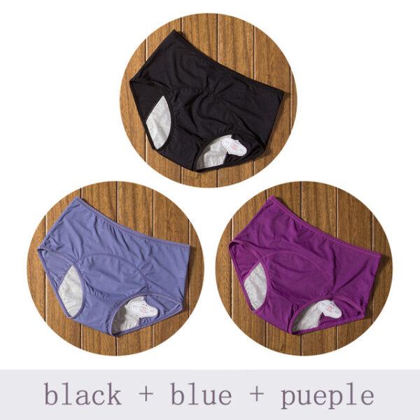 Physiological Pants Leak Proof Menstrual Women Underwear Period Panties Cotton Health Seamless Briefs High Waist Warm 3.jpg 640x640 3