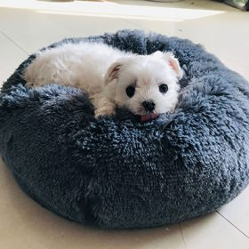 Peachy Calming Dog Bed Super Soft Pet Bed Long Plush Dog Kennel Inzonedesignstudio Interior Chair Design Inzonedesignstudiocom