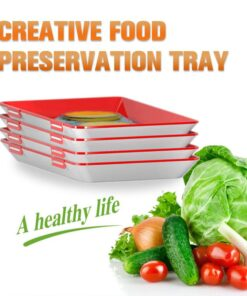 Creative Food Preservation Tray, Creative Food Preservation Tray