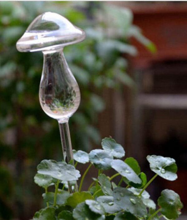 Self-Watering Plant Glass Bulbs