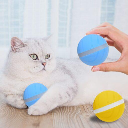 LED Pet Motion Ball, LED Pet Motion Ball