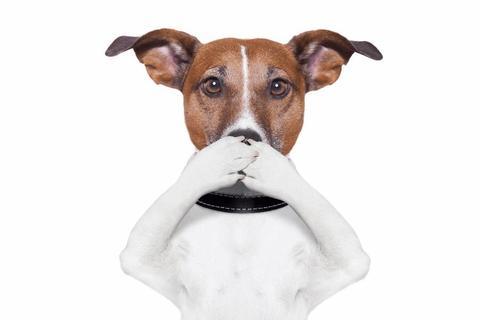 , Pet Breath Freshener