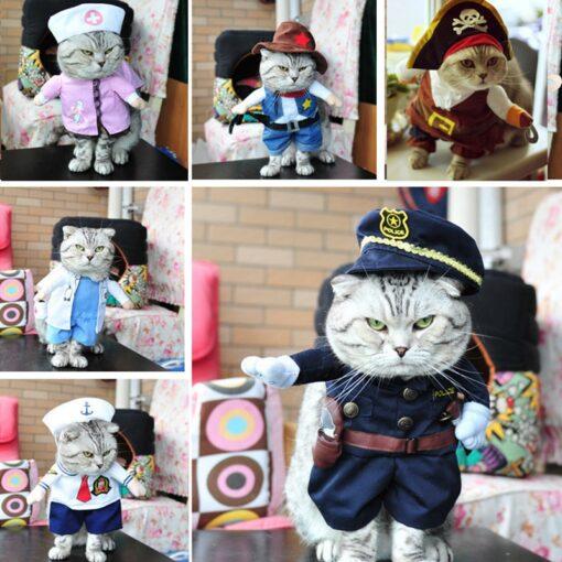 , Funny Cat Costumes