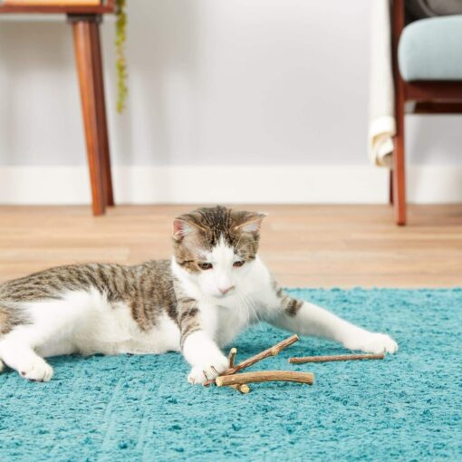 Cat Teeth Cleaning Sticks, Cat Teeth Cleaning Sticks