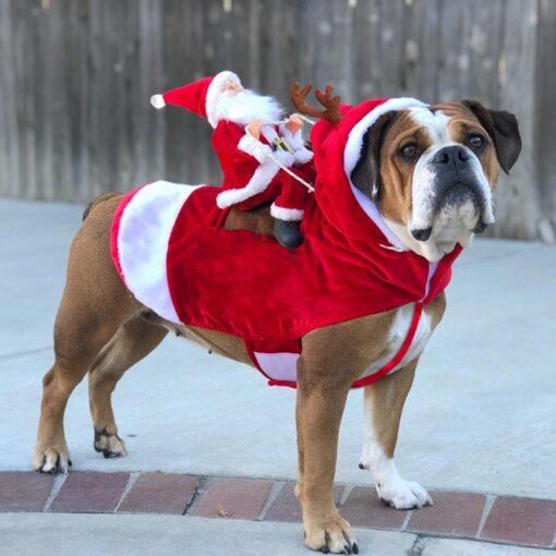 Christmas Dog Costume, Christmas Dog Costume