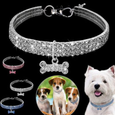 Crystal Pet Collar, Crystal Pet Collar