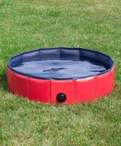 Portable Paw Pool, Portable Paw Pool