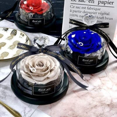 Exclusive Rose in Glass Dome with Lights Real Rose Beauty And The Beast Preserved Rosevalentines day 1